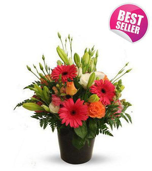 Seasonal Delight - Fresh Blooms Flowers
