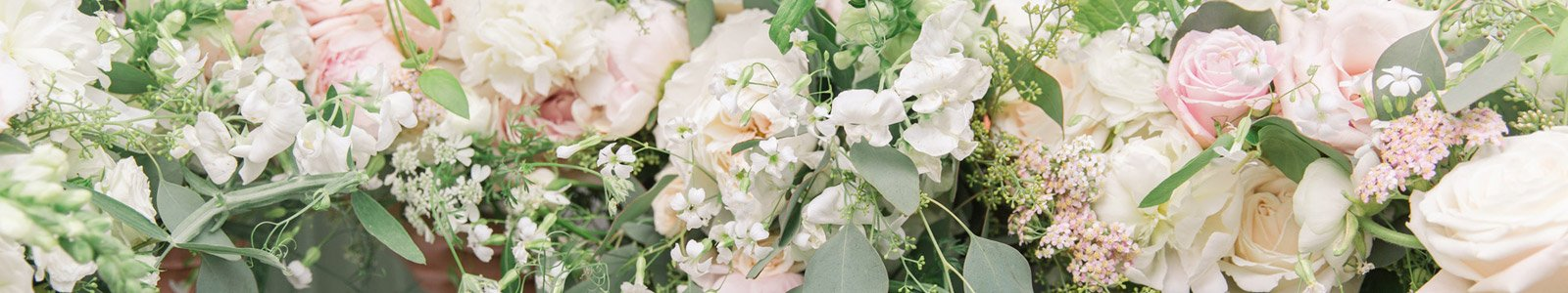 Flower delivery white rock choice image flower decoration ideas fresh blooms white rock florist same day luxury flowers delivery wedding flowers mightylinksfo choice image mightylinksfo