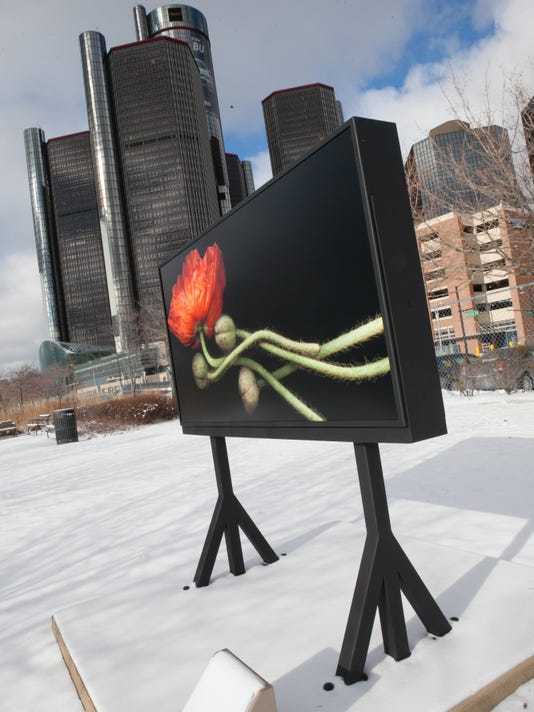 Dramatic flower images by Laurie Tennent installed on Detroit RiverWalk East