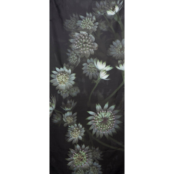 Astrantia Scarf Georgette