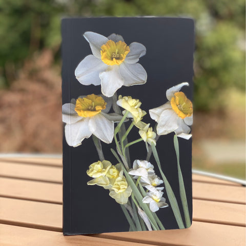 Belle Isle Daffodil Notebook