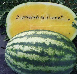 Yellow Meat Watermelon  (1) Medium