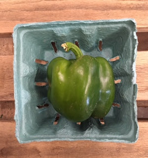 Large Green Pepper (1) Ct