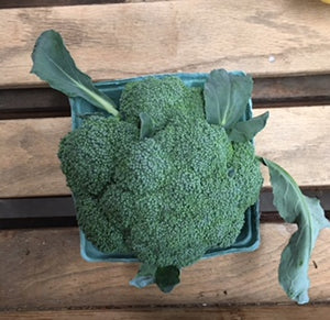 Broccoli (1) Head