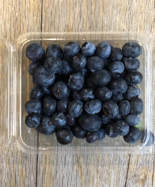 Florida Blueberries (6) Oz