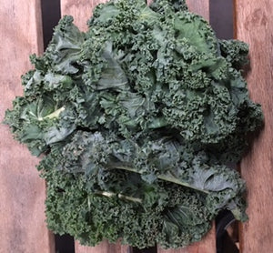 Green Kale (1) Bunch