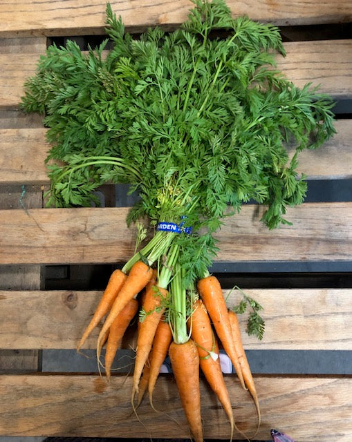 Local Carrots W/ Tops (1) Bunch