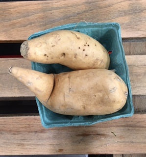 White Sweet Potatoes (2) Ct