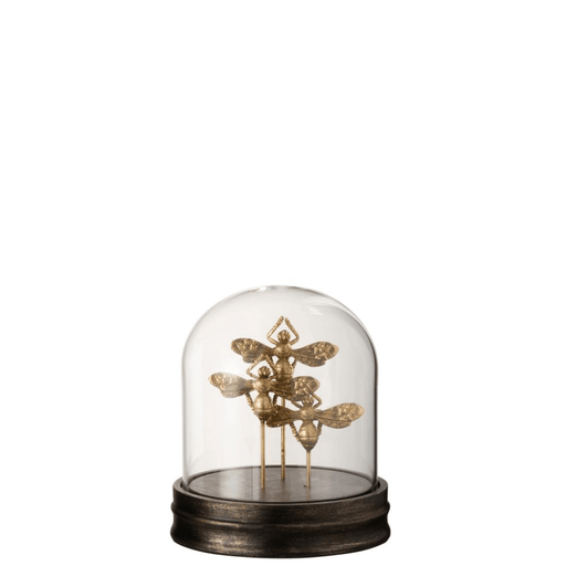 J-Line Decoratie Stolp 3 Insect Poly Glas Goud - ThatLyfeStyle