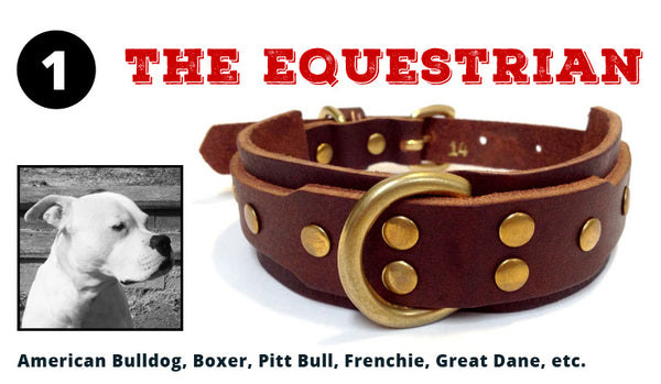 The Equestrian Dog Collar