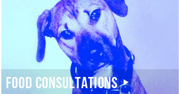 Miami Pet Food Consultations