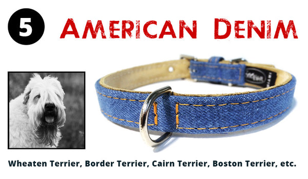 The American Denim Dog Collar