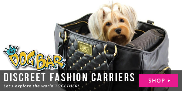 discreet fashion dog carriers