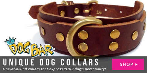 Unique Dog Collars