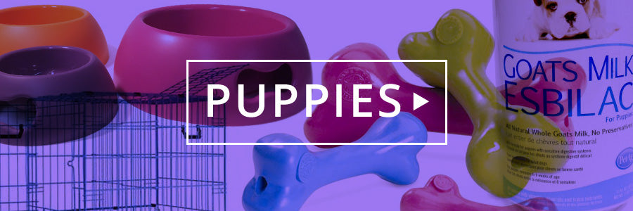 stuff just for puppies