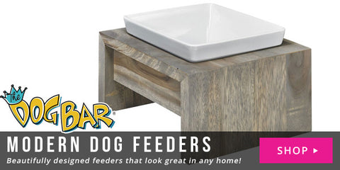 Modern Dog Feeders