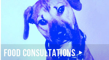 miami healthy pet food consultations
