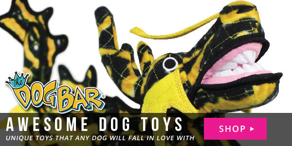 Awesome Dog Toys