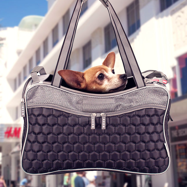 Dog In A Carrier Purse