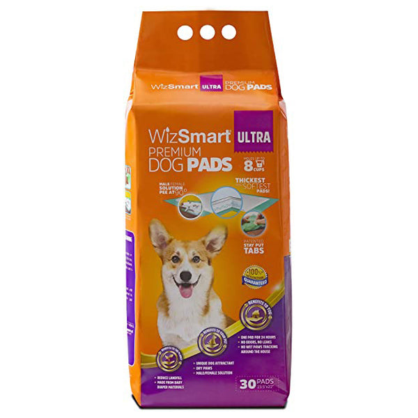 WizSmart All Day Dry Premium Pee Pads