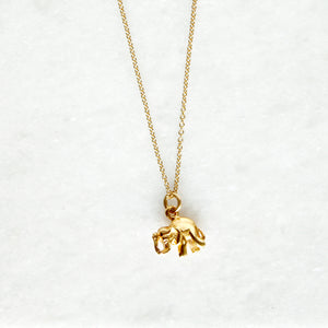 Elephant's Luck Necklace