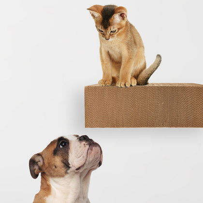 Pets - Hangman Products