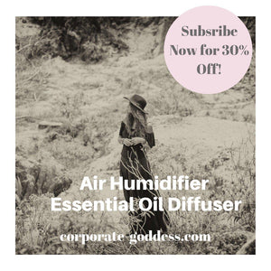 The Cannister Wooden Diffuser Humidifier and Air Purifier-The Corporate Goddess