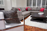 Couch set with coffe table