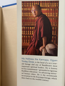 book: pre-loved interconnected karmapa inside back cover