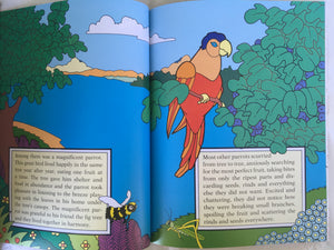 children's story book - the parrot and the fig tree - page 2