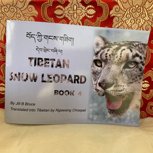 Children's Books: Tibetan Snow Leopard Book 4