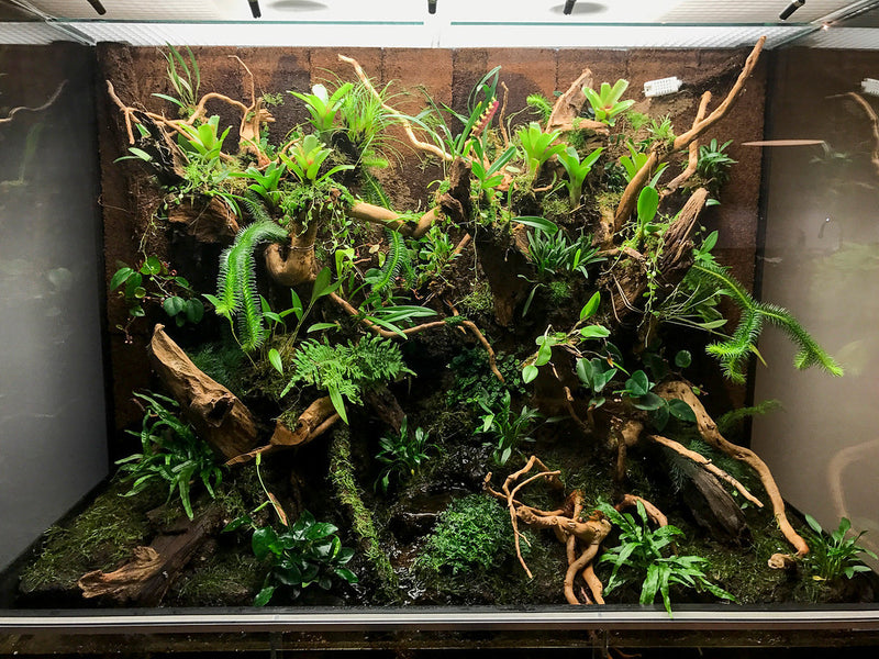 Raspberry Pi Roundup - a terrarium, Zero audio output and a SenseHAT-driven Battleships game