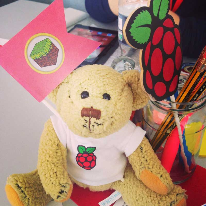 raspberry-pi-bear