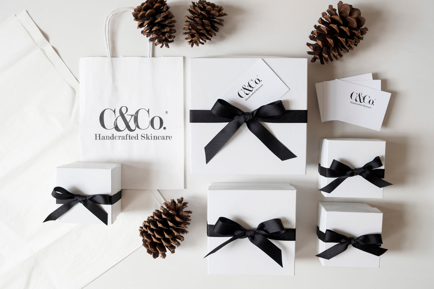 Gift Box & Ribbon - C & Co.®
