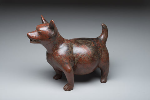 Artifact: Colima Canine 200 B.C - 300 A.D