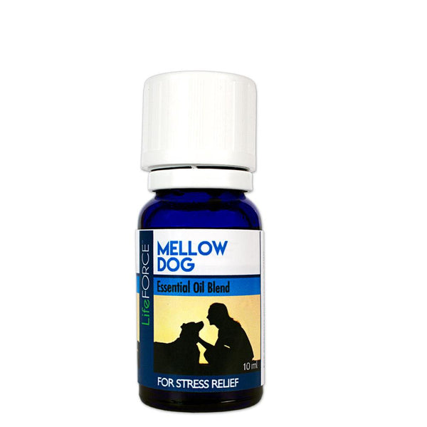 Mellow Dog Aromatherapy Kit POP Display