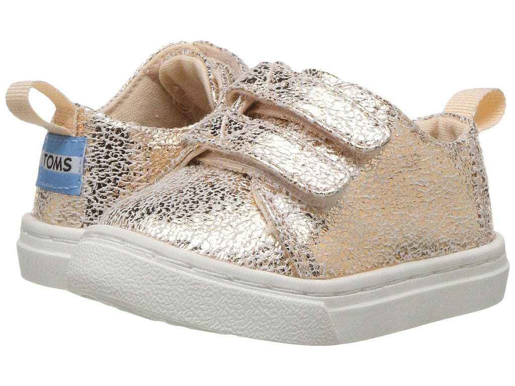 TOMS Kids | Lenny (Infant/Toddler/Little Kid) - Yashry