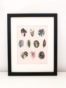 "Watercolor ""Foliage"" on pink background - 8.5 x 11"" print"