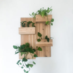"24"" x 32"" wall structure with plants"