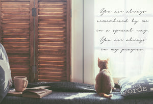 Friendship Card Cat By Windowsill Snapshot