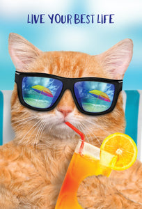 Best Life Cool Cat Funny Birthday Card