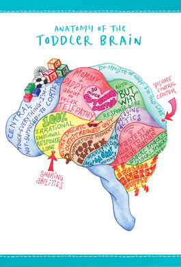 Anatomy of the Toddler Brain Funny Birthday Card