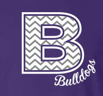 Brownsburg Cheer