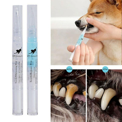PET TEETH REPAIRING KIT FREE SHIPPING