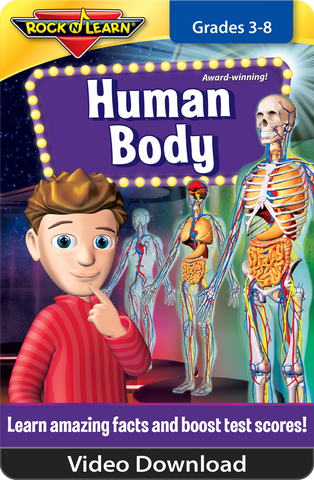Human Body Video Download