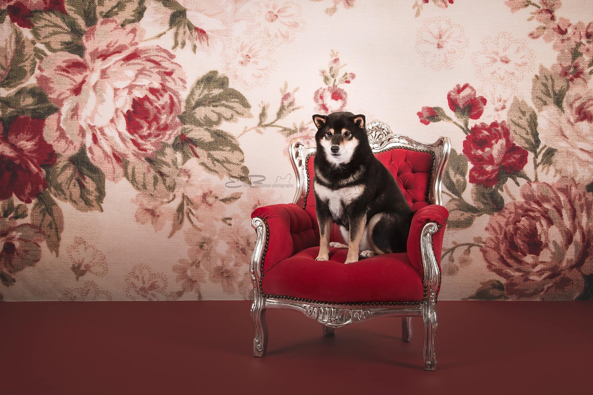 Floral Portrait Photography Backdrops