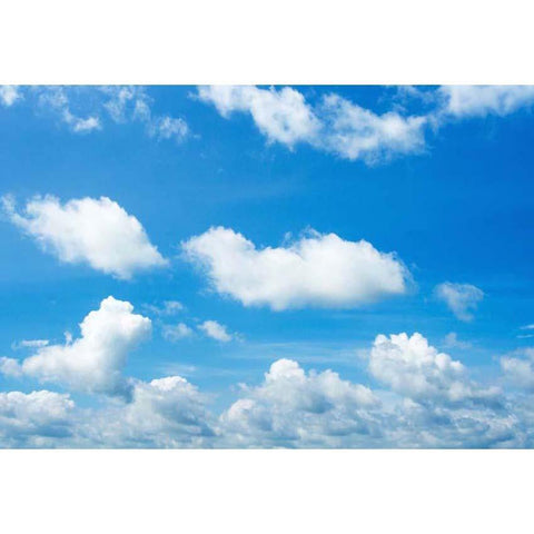 Blue sky and White Clouds Backdrop  For Party Photography