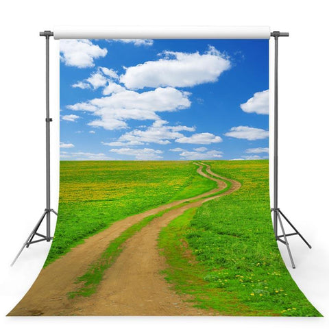 Great Grassland Footpath Backdrop Nature Photography Background