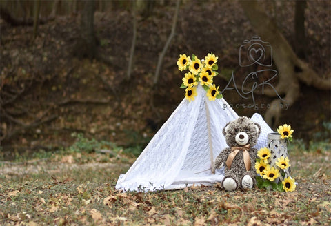 Wigwam Baby Show  Sun Flowers Backdrop for AGR Photography