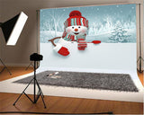 Christmas Snowman Winter Backdrop